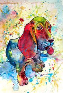 Cute basset hound - kovacsannabrigitta