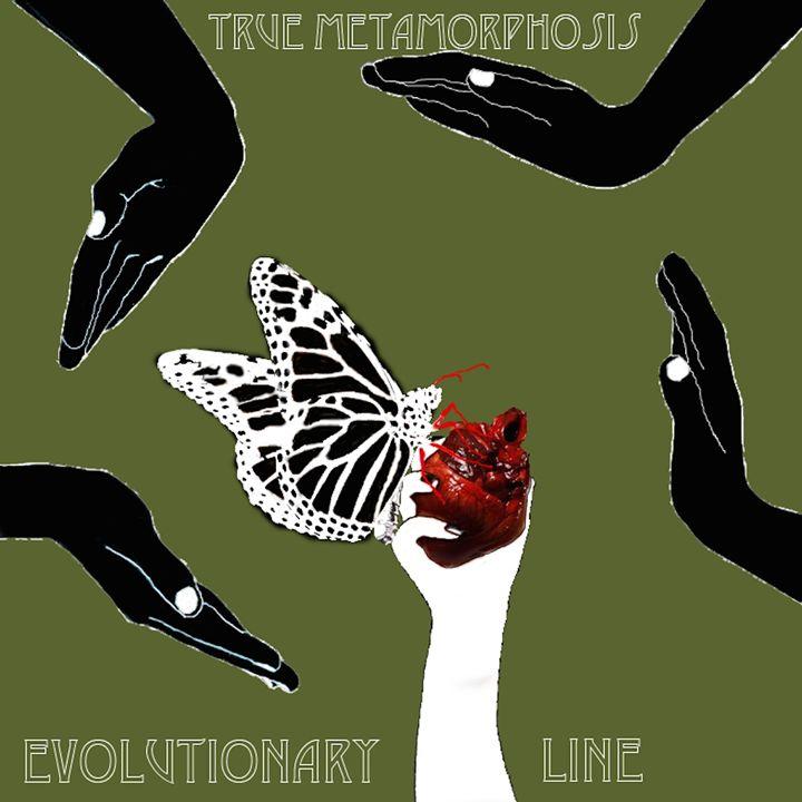 Evolutionary Line - Creations