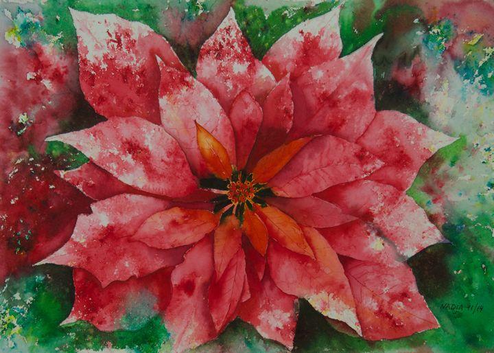Poinsettia - Nadja Yabrova Art