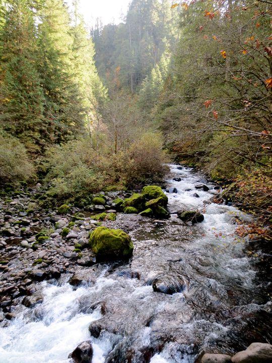 River - Taylor Ludtke