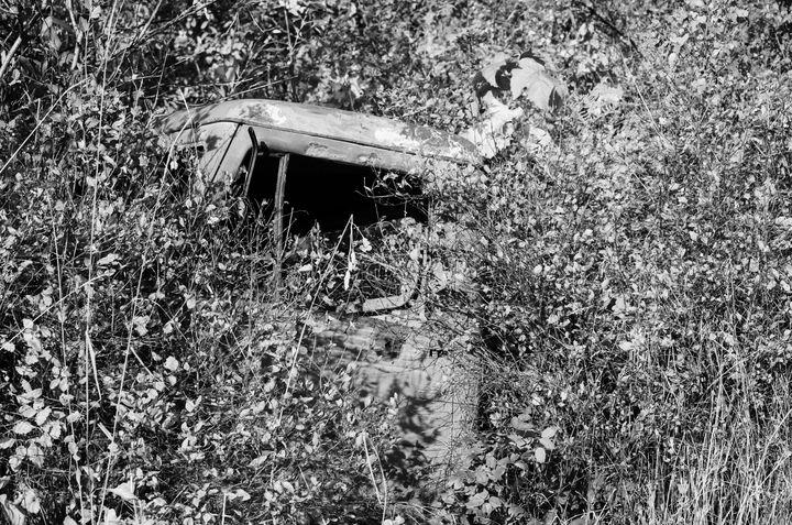 Overgrown - Sylvia Beatty