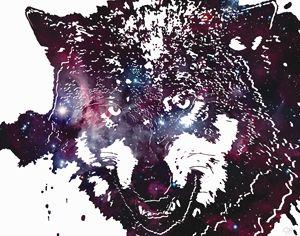 Wolf Space - Corey Watson