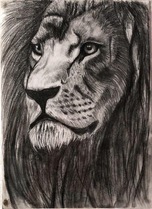 Lion - Dominika