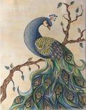 Original pencil peacock draw