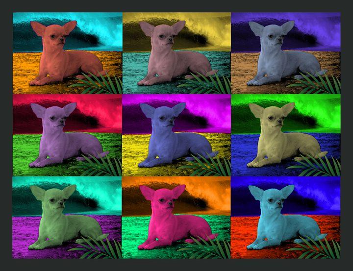 Chihuahua Surf POP Giclee Canvas - Chihuahua