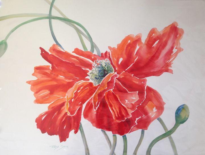 Oriental Poppy - ArtByTeresa