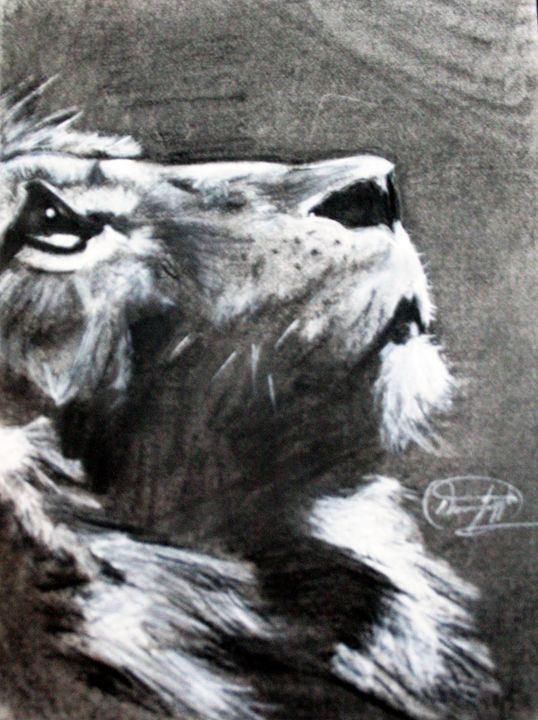 Lion - Darien's art