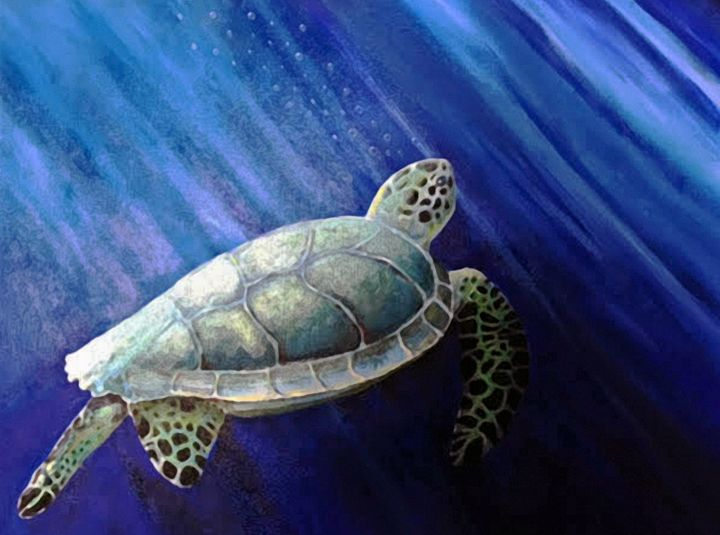 sea turtle - indiecarving