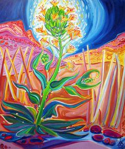 Bisti Wilderness Wildflower