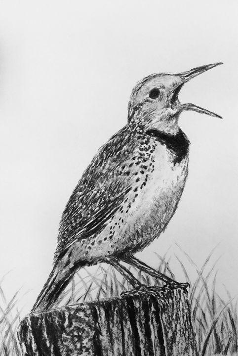 Meadowlark - Kristina Andrada