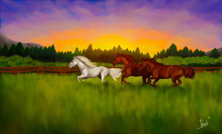 Horses in the wild - Yolanda