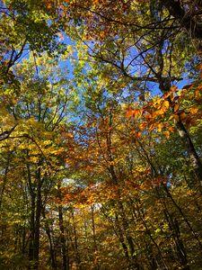 New England Hike