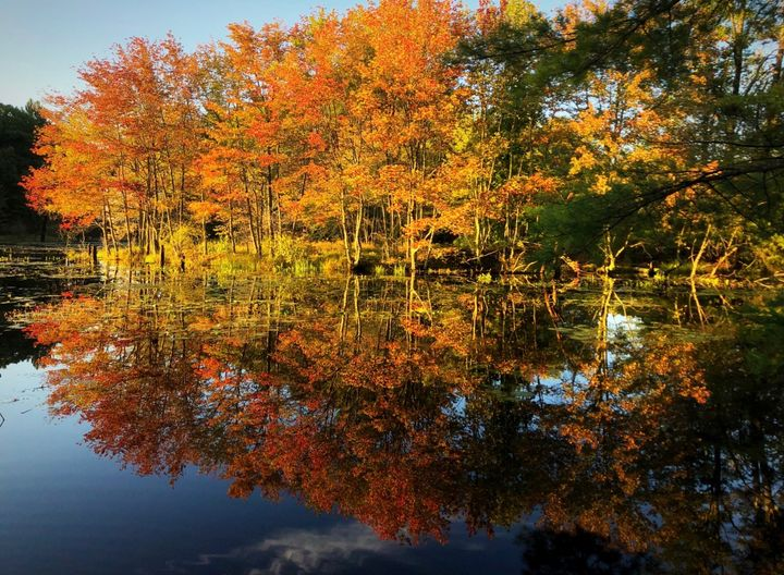 New England Autumn - Katie Wagner Photography
