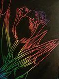8x10in. Rainbow Tulips