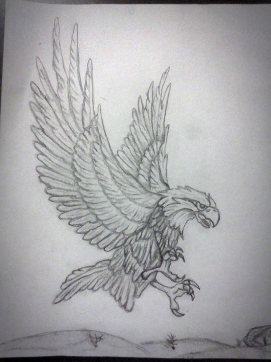 American Eagle. - A malins sketch art.
