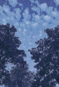 Van Gogh Blue