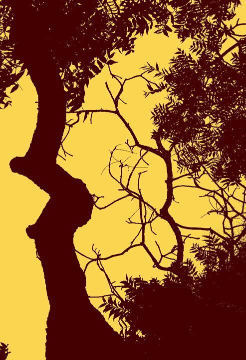 Yellow Sky - David Fleming Photographs