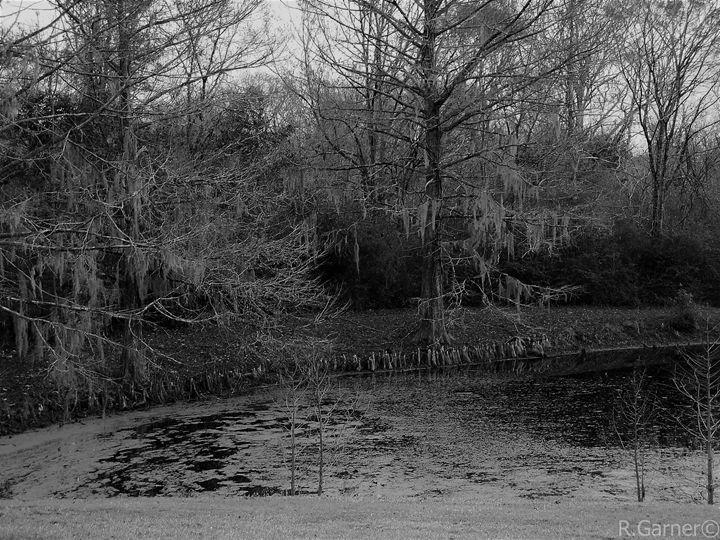 swampland - BullHeaded Art