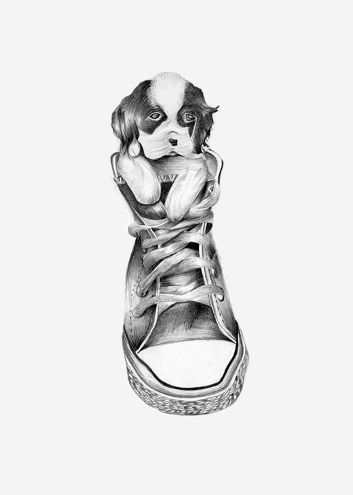 Dog in a shoe - Paintings