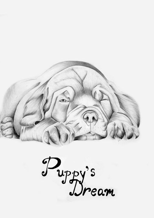 Puppy's dream - Paintings