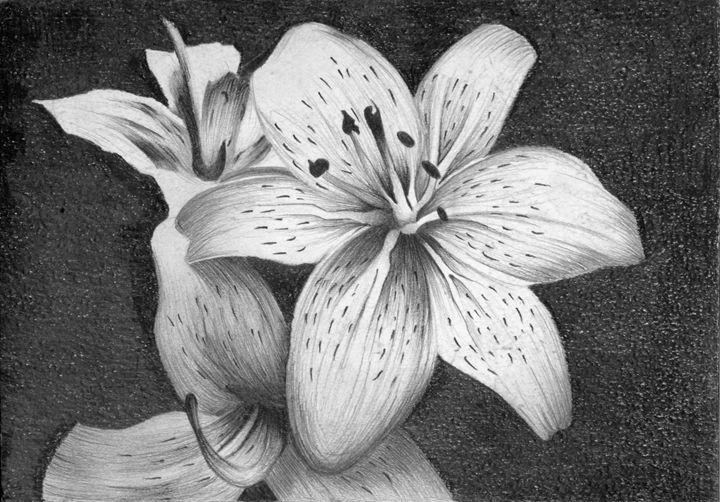 Flowers - Paintings