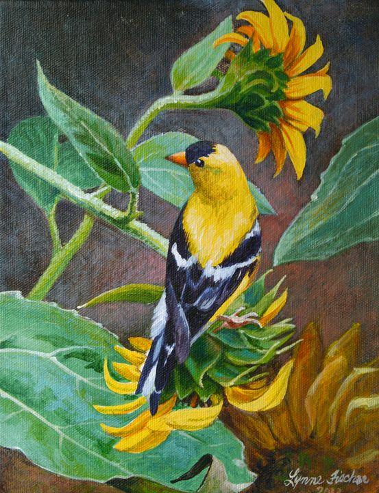 Goldfinch and Sunflowers - Lynne Fischer Studios