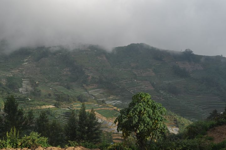 Banjarnegara - central Java - Kwazen Gallery