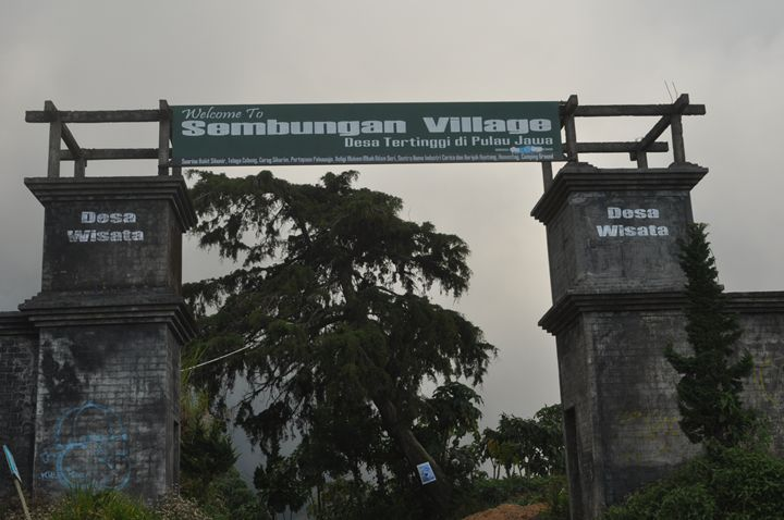 Sembungan-the highest Java village - Kwazen Gallery
