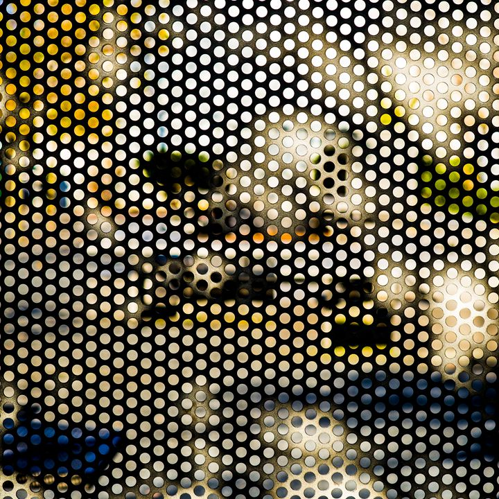 Circles of Color - Photos
