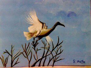 Nature Hunt - Kavitha Creatives
