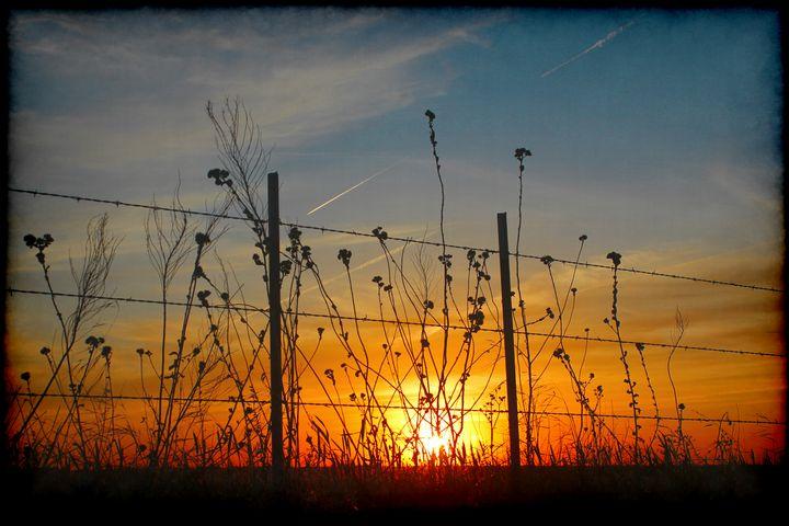 A Prairie Life - Groovyal