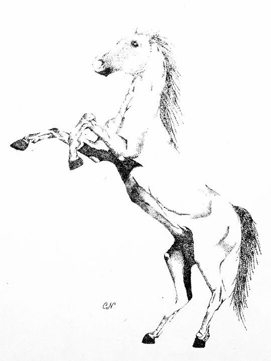 Horse - Caren G