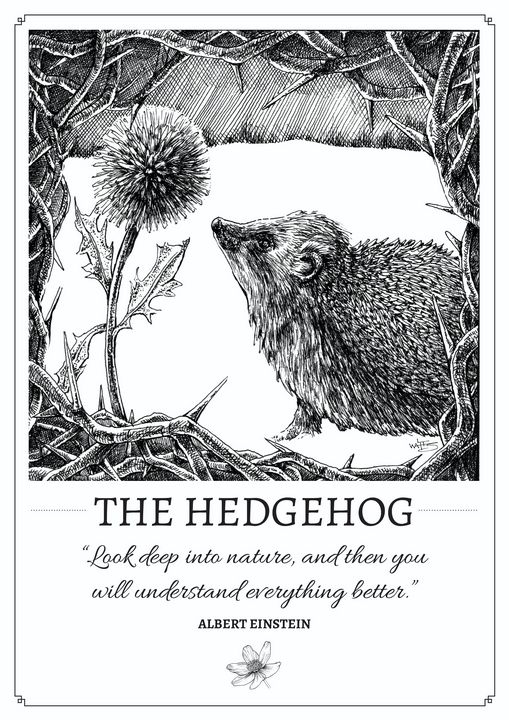 The Hedgehog - Gnostic Forest Art