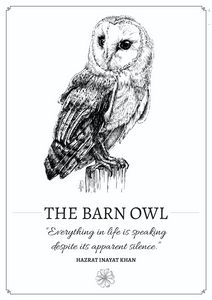 The Barn Owl