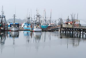 Yaquina Bay Harbor, Newport, Oregon