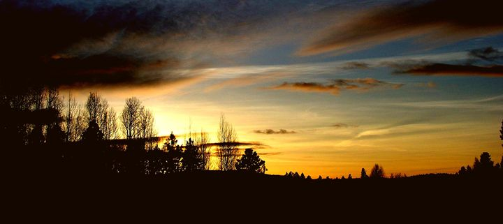Silhoutte Of A Sunset - Havalah's Photography