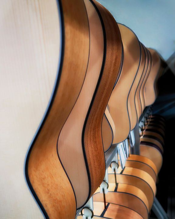 Curves in Harmony - Michael Barone Photography