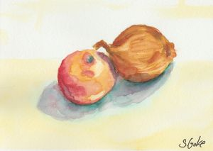 The Apple and it's Onion