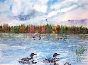Northern loons