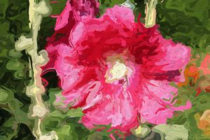 Painted hibiscus