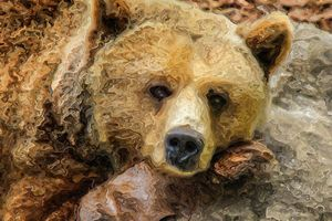 Lazy Grizzly Bear - PrintArt.US