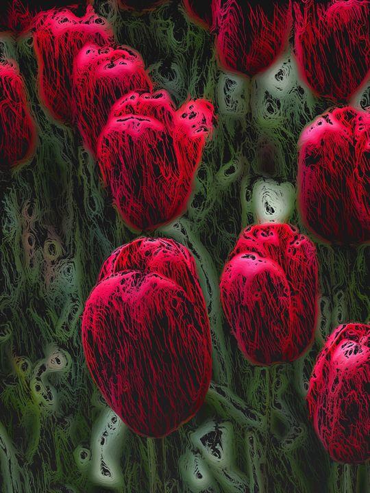 Red Tulips - PrintArt.US