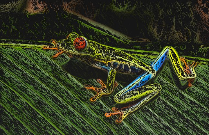 Colorful Frog on a Leaf  - PrintArt US - Digital Art