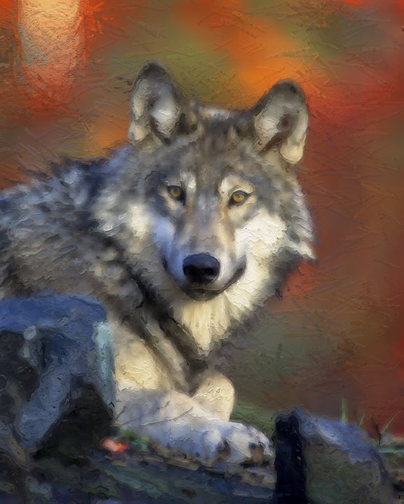Wolf in the Wild - PrintArt.US