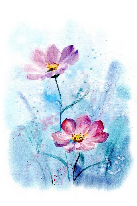 Cosmea flowers - NadezzzdaArt
