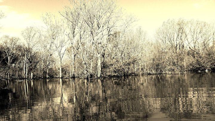 Des Arc Bayou - Arkansas as seen by me