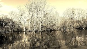 Des Arc Bayou
