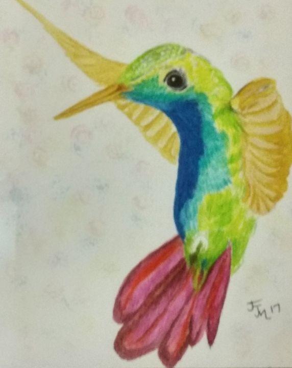 Hummingbird of a colour - JmurArt