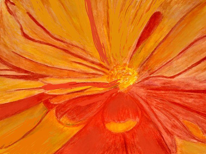 Orange - JmurArt