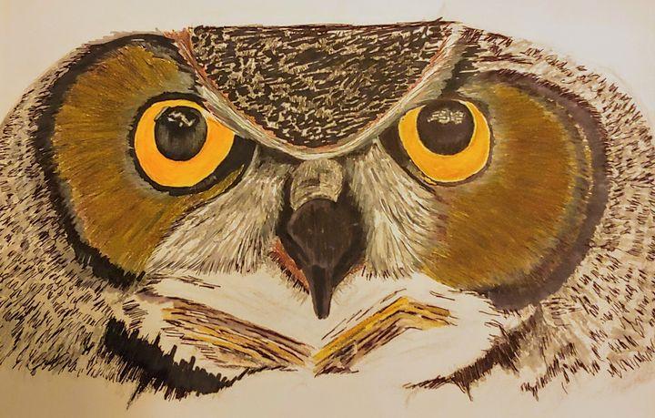 Owl - JmurArt